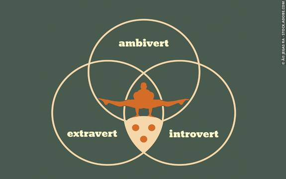 Are You An Extravert? Test