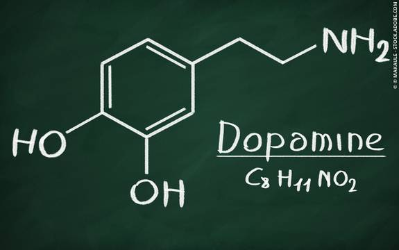 Dopamine Neurotransmitter